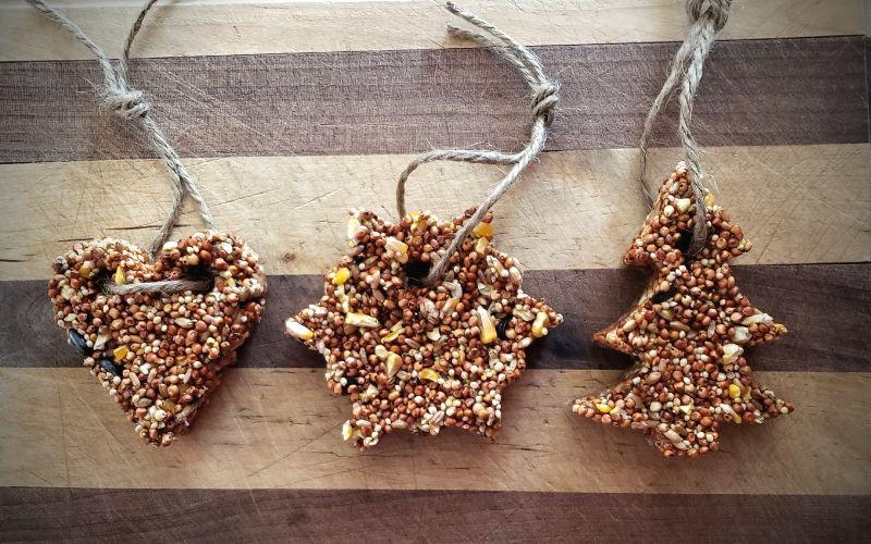 Cookie Cutter Bird Feeders – Easy Craft For Kids