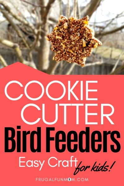 Cookie Cutter Bird Feeders | Frugal Fun Mom