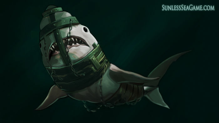 Shark review SIZE