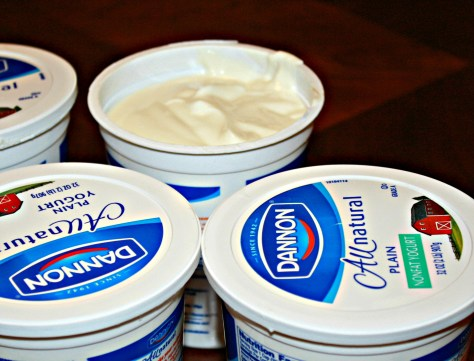 The Best Yogurt, Ever - 4 quarts of Greek Style Yogurt