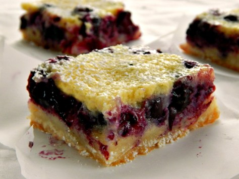 Blueberry Custard Pie Bars