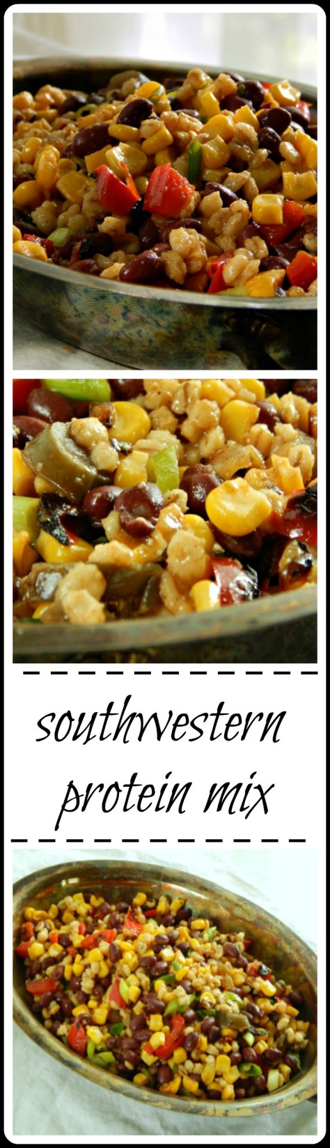 Southwestern Protein Mix: So much better than the frozen stuff!