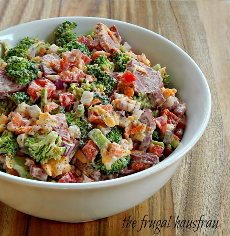Best Salad in the World: Broccoli, bell pepper, red onion, cheese & salami sausage. It really IS excellent.