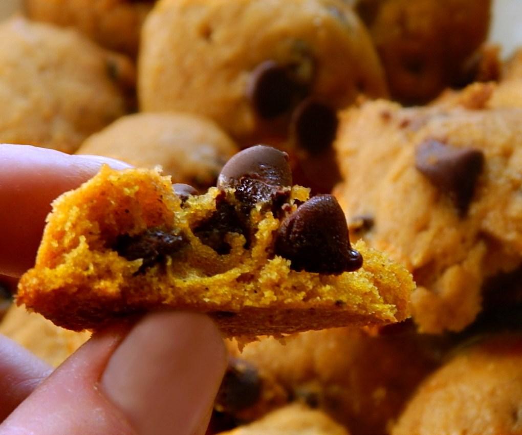 Pumpkin Drop Cookies - add raisins or chocolate chips.