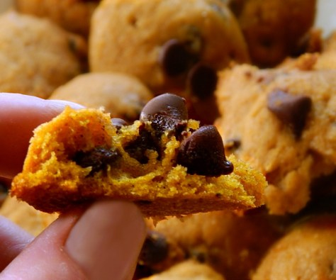 Pumpkin Drop Cookies - add raisins or chocolate chips.