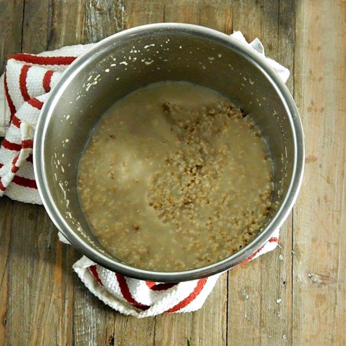 Best Instant Pot Steel Cut Oatmeal 2 3/4 cups water