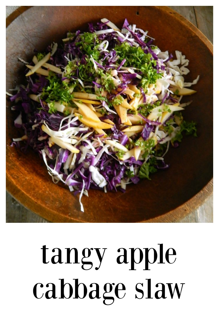 This super easy, light and refreshing, sweet and Tangy Apple Cabbage Slaw is going to be just the thing for any summer celebrations! #AppleCabbageSlaw