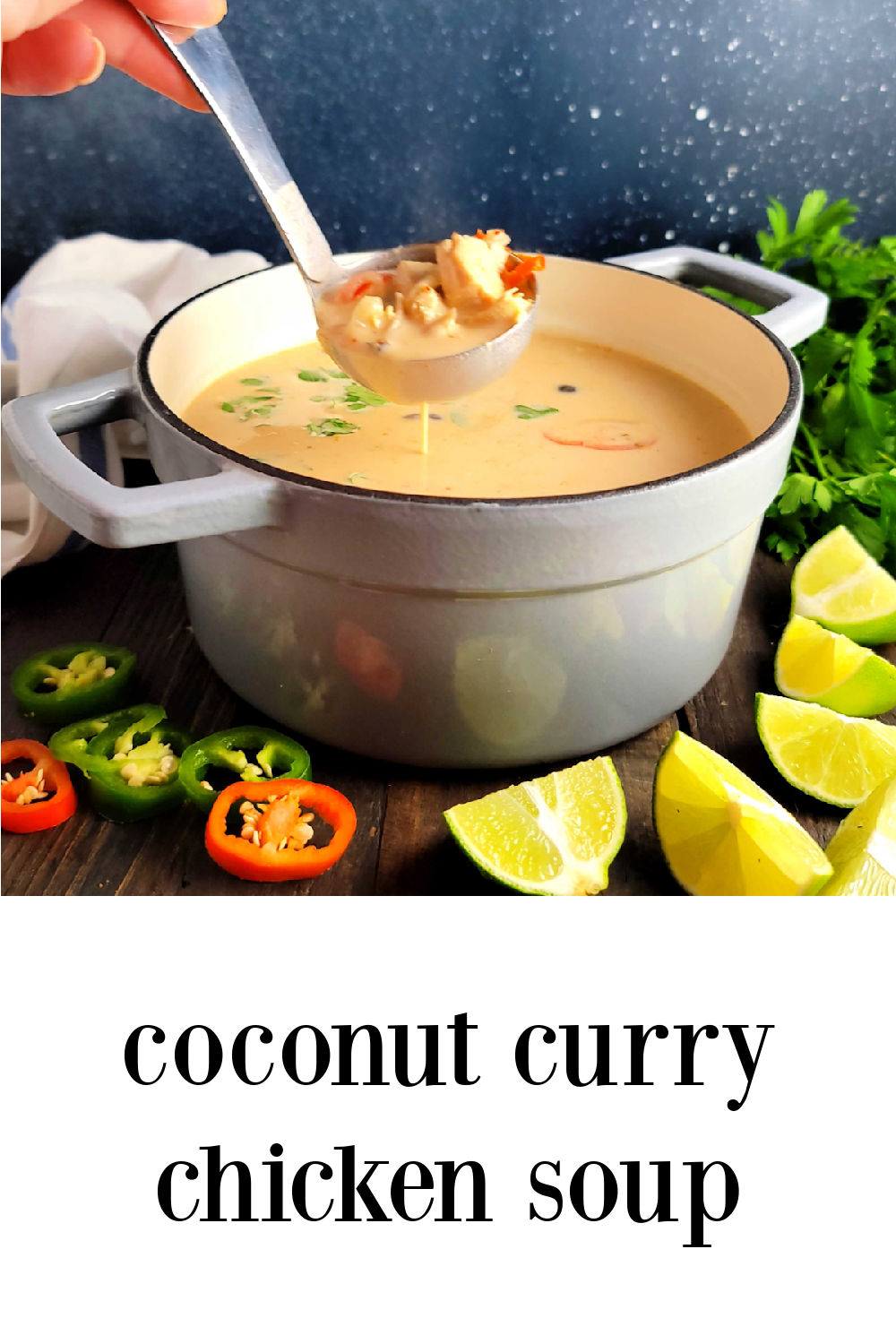 pin Coconut Curry Chicken Soup