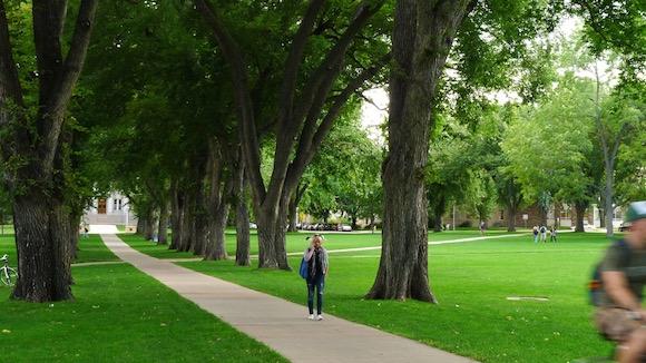 Colorado State University The Oval