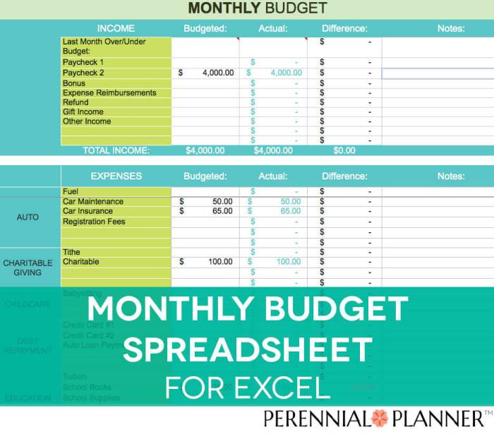 This Monthly Excel Budget Spreadsheet from Perennial Planner will help you organize your finances. I love how pretty it is, and I use this one to manage my own budget!