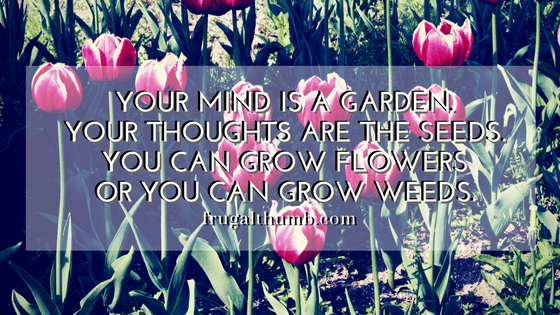 Your mind is a garden. Your thoughts are the seeds. You can grow flowers or you can grow weeds.