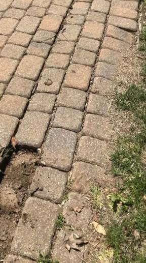 patio pavers are sinking