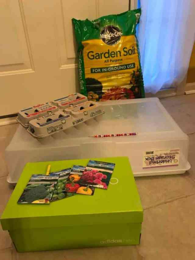 seed starter kit supplies from around the house