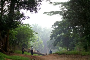 A misty morning in the Congo
