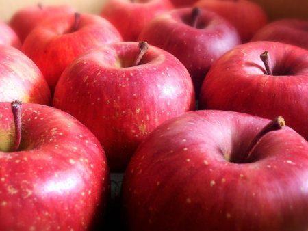 りんごの種には毒がある?丸ごと食べたら危険なの?