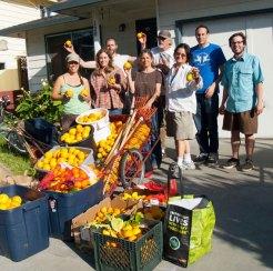Citrus Harvest Bounty
