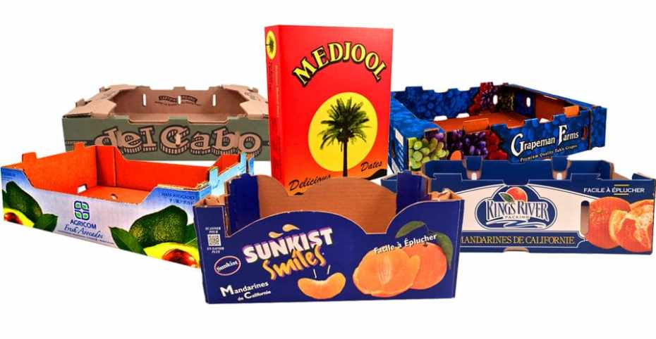 Corrugated boxes with quality graphics
