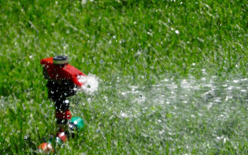 A red lawn sprinkler watering the grass