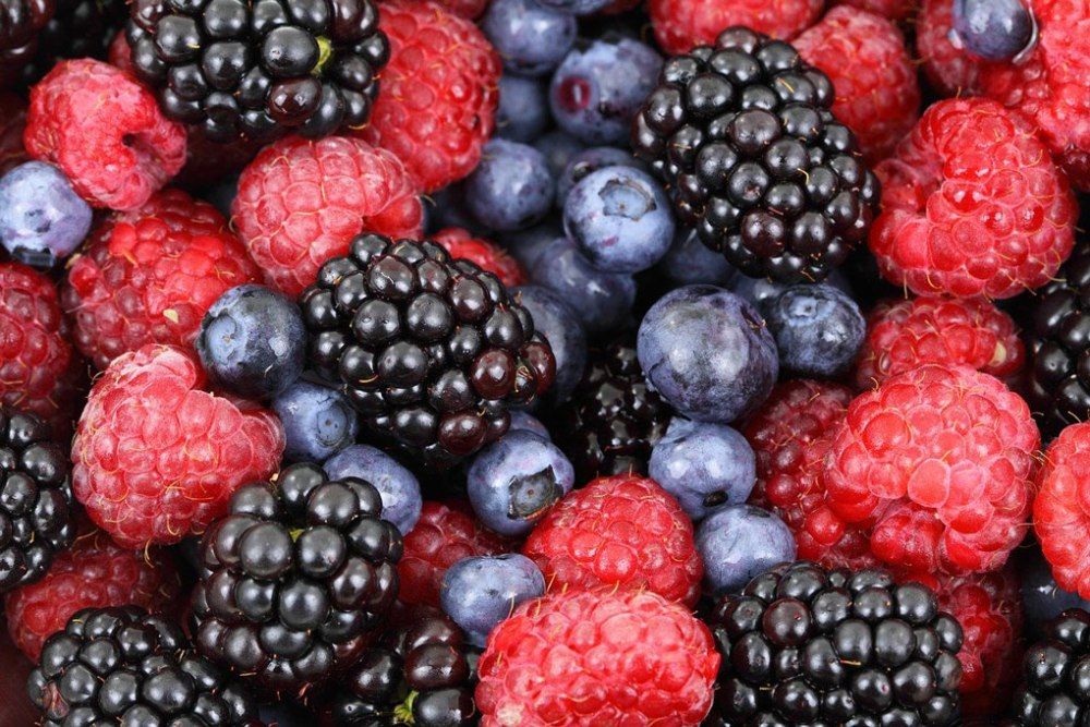 A close-up view of blackberries, blueberries, and raspberries