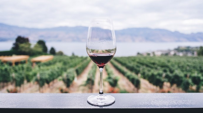 Glass of wine in front of a field