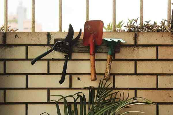 Three gardening tools hanging on hooks on a brick wall.