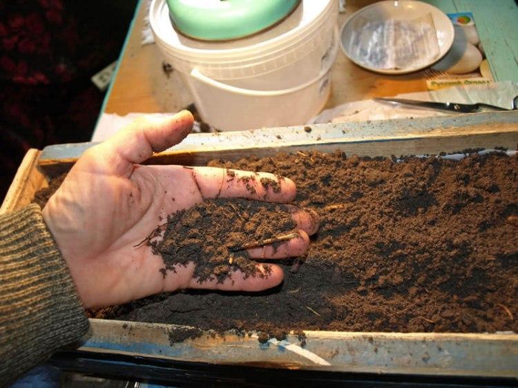 Подготовка грунта к рассаде