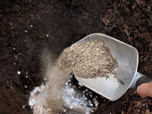 Подготовка почвы к высадке саженцев