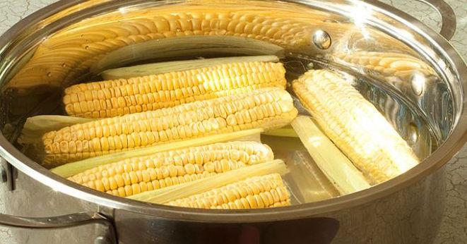 Сколько нужно варить кукурузу в початках