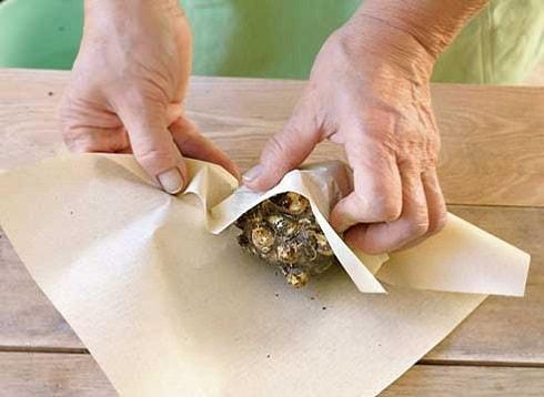 Подготовка клубней к хранению