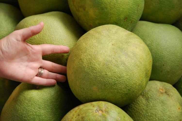 Внешне фрукт не должен иметь дефектов