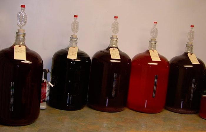 Процесс отстаивания сливового вина
