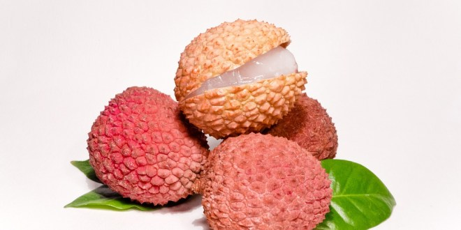 Lychee fruit facts