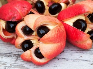 Ackee Fruit health facts