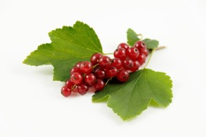 Currants Fruit Health facts