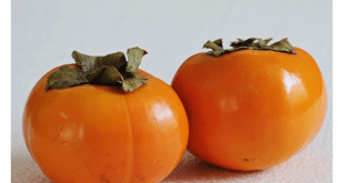 Persimmon Flavoring , Extract and Uses