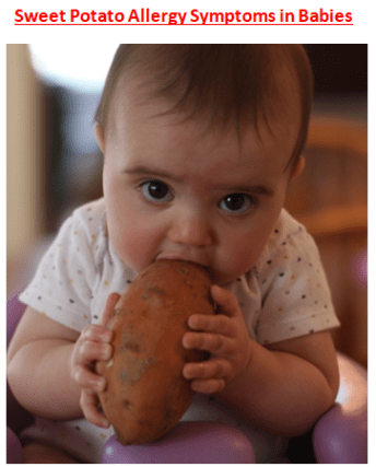 Sweet Potato Allergy Symptoms in Babies