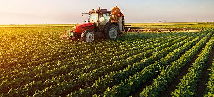 A vidék jövője a fiatal gazdák kezében van
