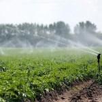 Az öntözővíz alapdíjának 70 százalékát az állam állja