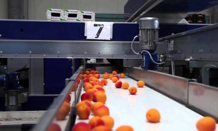 A Széchenyi István Mezőgazdasági és Élelmiszeripari Szakgimnázium, Szakközépiskola és Kollégium 2019. nyarától 90 %-ban támogatott képzéseket indít