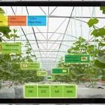 Innovatív megoldás a növényházi klímaszabályozás területén