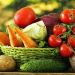 FruitVeB Bulletin 2019 – Zöldségtermesztés II. rész