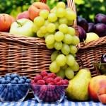 FruitVeB Bulletin 2019 – Gyümölcstermesztés III. rész