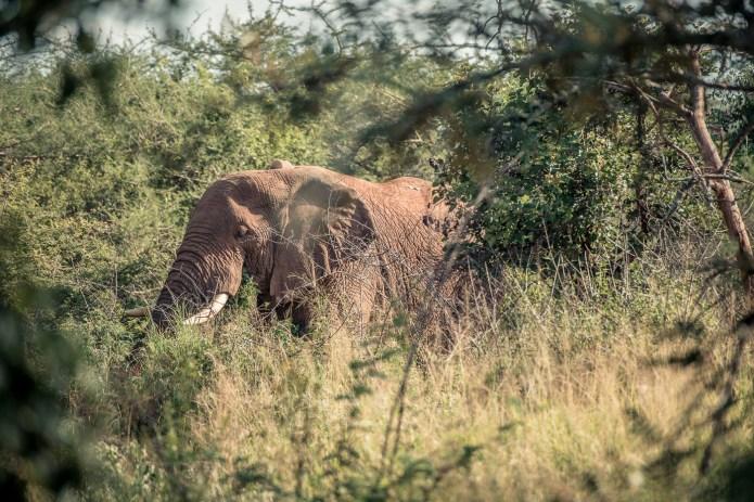 Travel Rwanda 2015_small-775