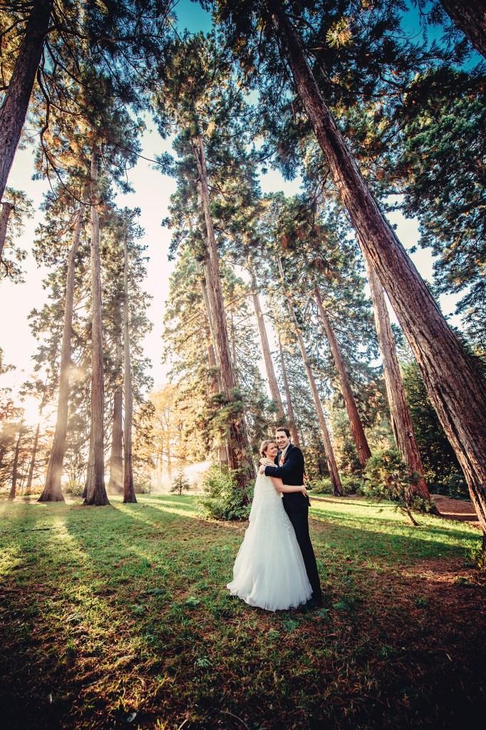 weddingportraitsnov92385212031529