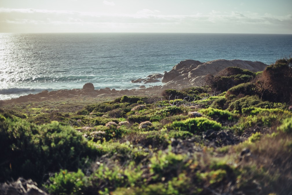 Margaret River Oktober 2018_small-89