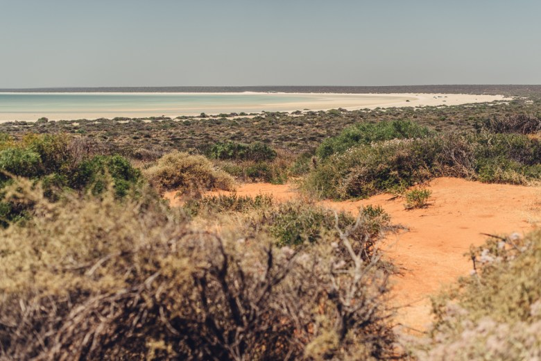 westaustralia_small_size_copyright_frumoltphotography2331-261