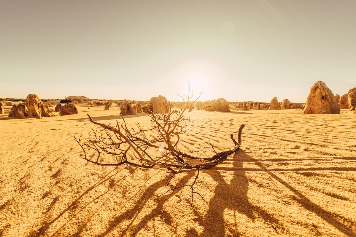 westaustralia_small_size_copyright_frumoltphotography2331-432