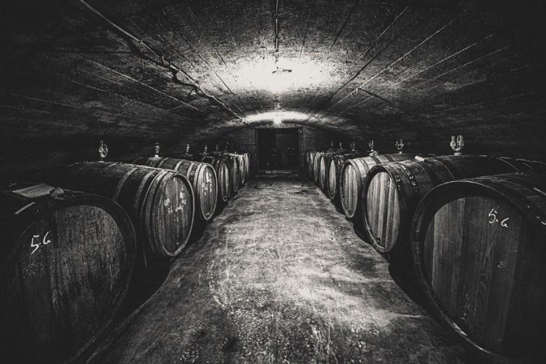 German Wine Tour frumolt photography small size-126