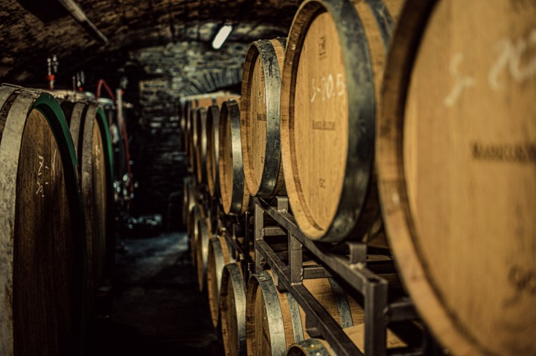 German Wine Tour frumolt photography small size-71