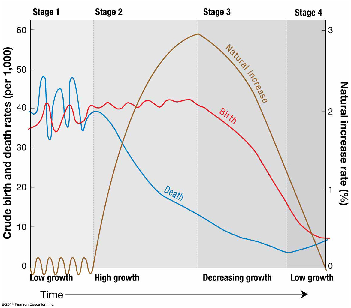 Demographic Transition Activity
